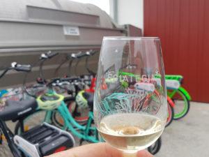 randonnée-velo-degustation-vin-egiategia-les-roues-de-lilou