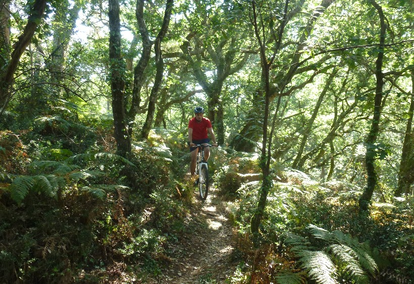 bike-mountain-bike-randoceane-les-roues-de-lilou (4)