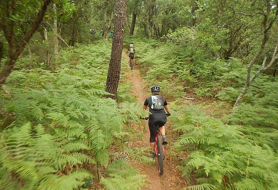 tour-en-bici-bicicleta-elecrica-randoceane-les-roues-de-lilou (4)